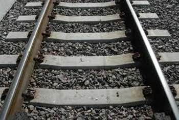 VIDEO: Trains to Trinco terminated from Palugaswewa