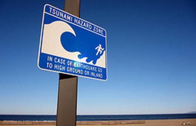 Don't panic! No tsunami threat - DMC
