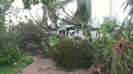 Over 300 houses destroyed as strong winds rip through Gampaha