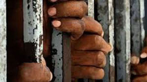 4 Sri Lankans held for illegally entering India