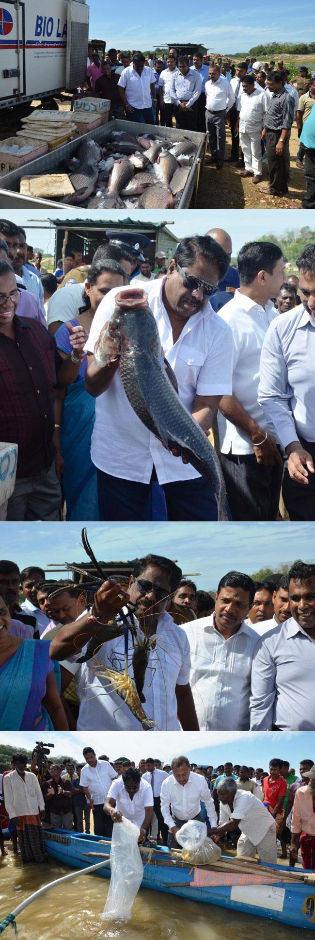 Fishy business...