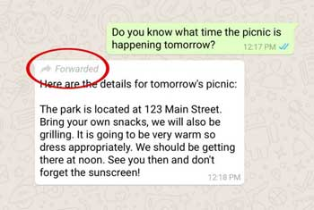 WhatsApp now labels forwarded messages to curb fake news