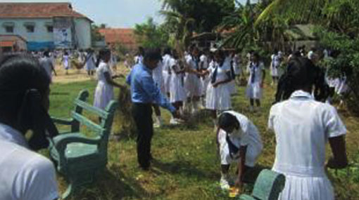 Dengue prevention programme in eight districts