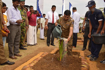Coconut trees planted in Vavuniya and Mannar...