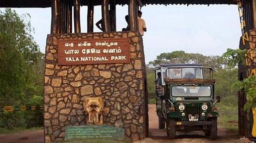 Yala National Park closed for two months