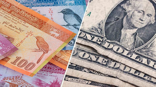 Sri Lanka Rupee hits fresh low