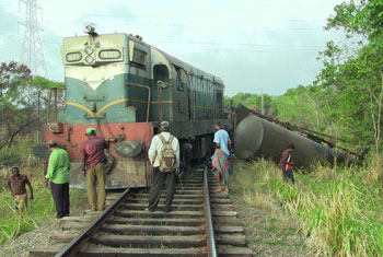 Three elephants killed by train...