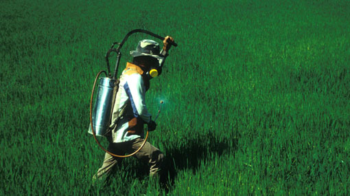 Sri Lanka bans pesticides containing 5 chemicals
