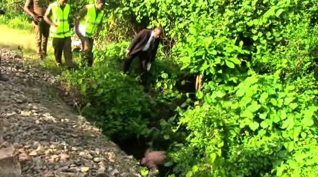 Unidentified male found dead in culvert