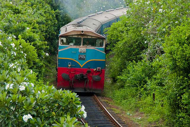 Train services disrupted on upcountry railway line