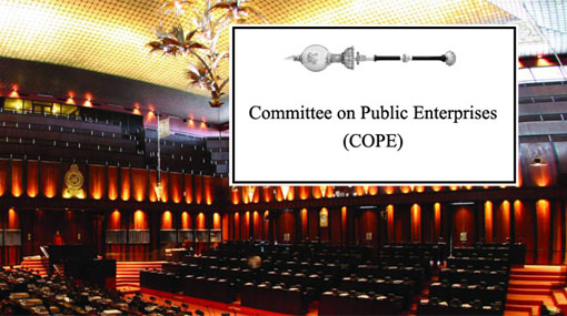 COPE report on 17 state institutions tabled in Parliament