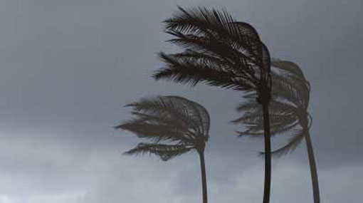 Windy condition to strengthen over the island