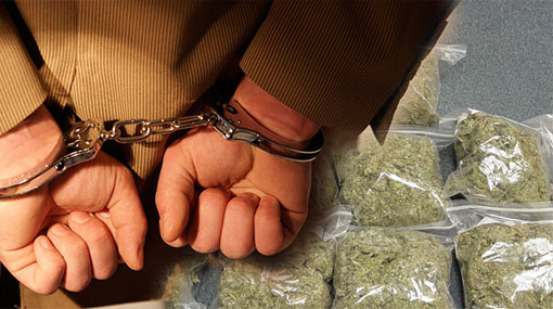 Two including STF Sub-Inspector arrested with Kerala Cannabis