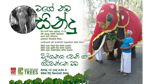 'Manusath Derana' successfully completes One Million Trees project