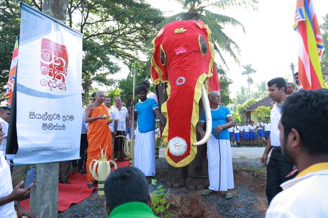 Manusath Derana completes 'One Million Trees' project…