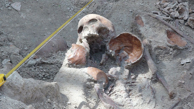 Excavations at Mannar mass grave temporarily halted