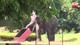 Elephant goes on rampage at Sabaragamuwa Saman Devalaya