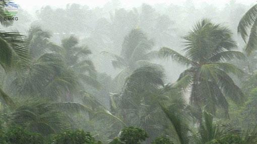 Severe thunderstorm and heavy rainfall advisory issued