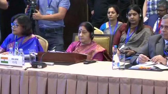 Sri Lanka, Pulwama attacks made India determined to fight terrorism: Swaraj