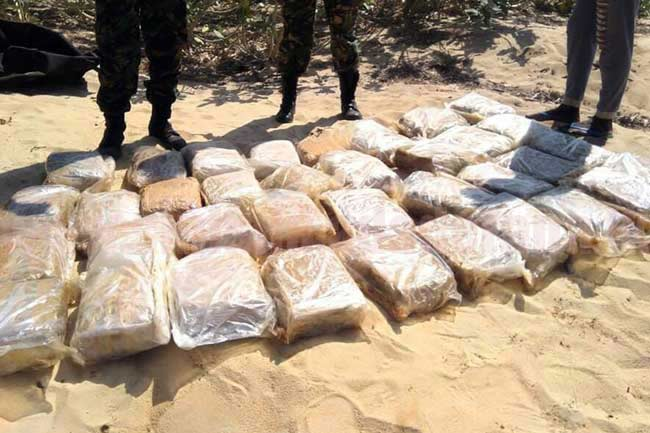 Navy apprehends two with over 126 kg of Kerala cannabis
