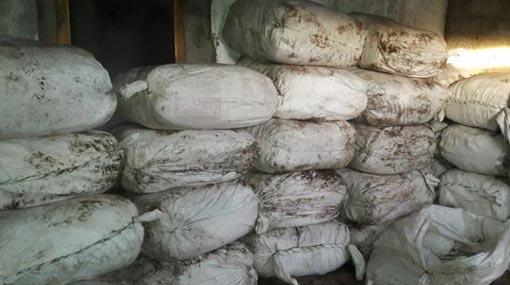 Navy seizes over 946 kg of Beedi leaves