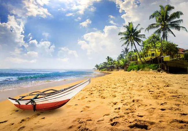 Sri Lanka looks to invite global celebrities to boost tourism