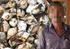 Suspect nabbed with over 4000 conch shells in Talaimannar