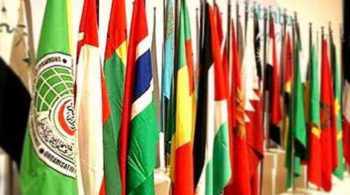 OIC countries urge President to ensure safety of Muslims