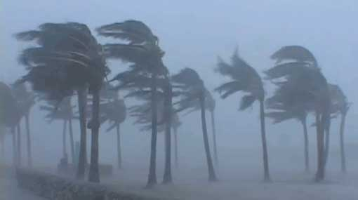 Prevailing windy conditions likely to continue - Met. Department