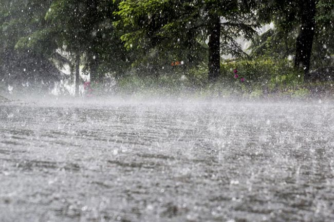 At least 8 killed in heavy rainfall; several houses damaged
