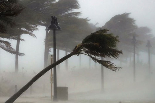 Sudden increase in wind speed expected - Met. Dept.