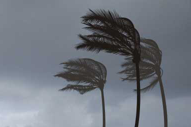 Windy condition expected to continue