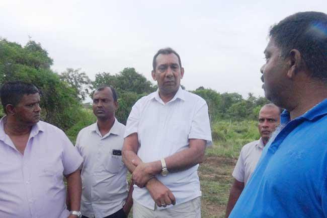 Govt. will bear responsibility of Habarana elephant deaths – Ranjith Aluvihare