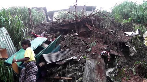 Tree falls on unauthorized dwelling; 3 including children killed