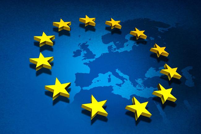 Prez poll important for reconciliation process in Sri Lanka - EU