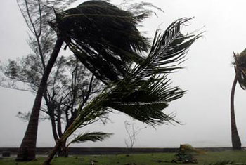 Strong winds expected to continue around the island