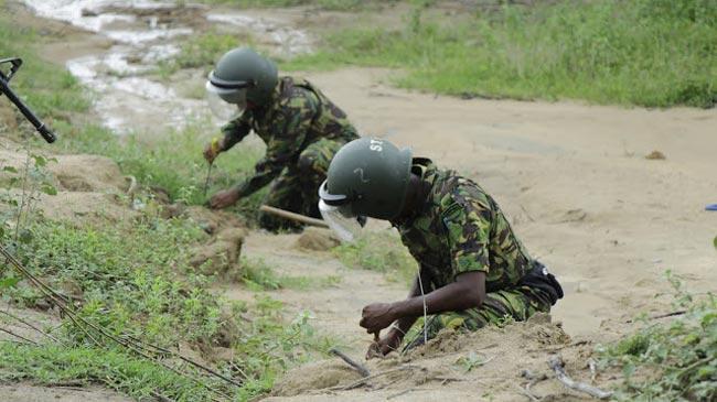 Twenty-four hand grenades found in paddy field