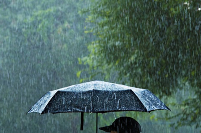 Showery condition in Northern areas likely to reduce
