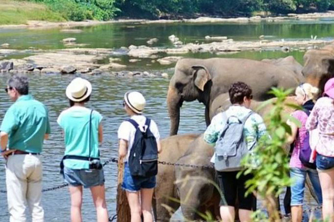 Sri Lanka records 1.9 Mn tourists in 2019