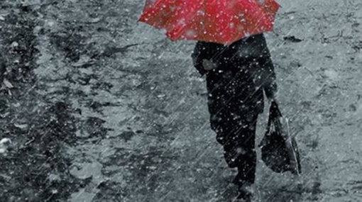 Afternoon thundershowers expected today