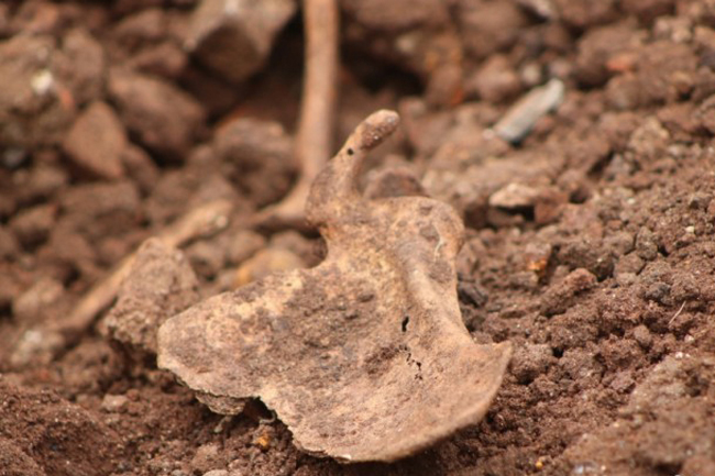 Bone fragments found in Mankulam...