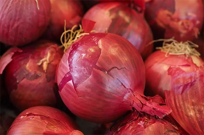 Maximum retail price for imported big onions declared