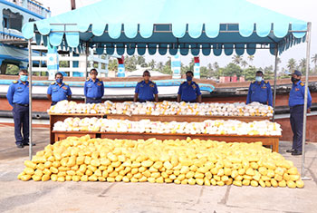 Record drug haul seized by navy...