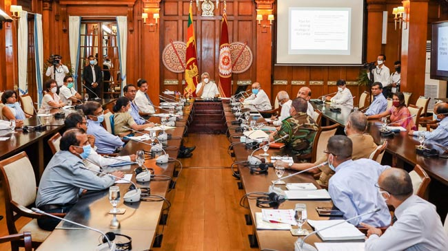 President seeks medical experts' opinion on defeating COVID-19