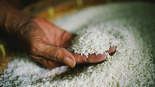 Operations of all rice mills declared an essential service