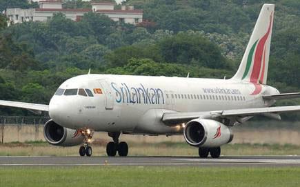 291 Sri Lankans repatriated from Singapore