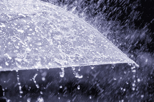 Showers or thundershowers expected in some provinces