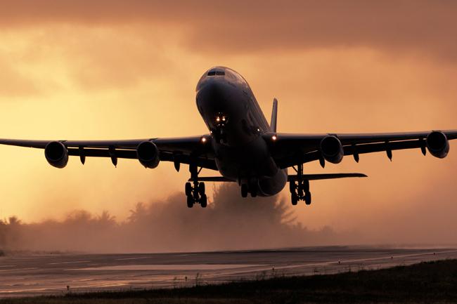 349 Sri Lankans repatriated from UAE, Qatar