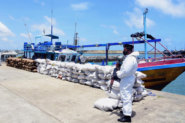 Four attempting to smuggle in over 6,300kg of turmeric apprehended