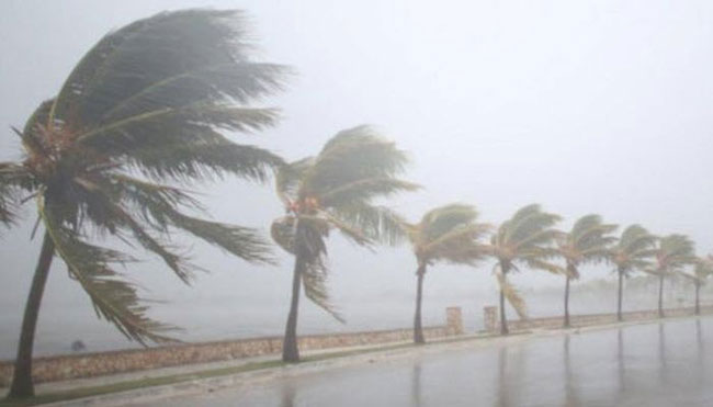 Heavy rainfall and strong winds expected
